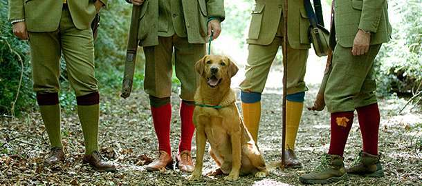 Plus Twos and Plus Fours