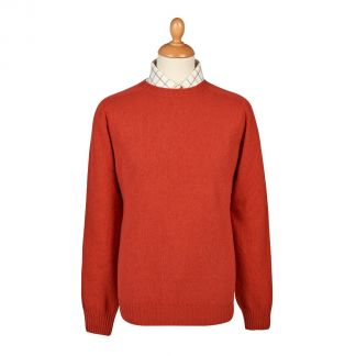 Cordings Rust Wool Cashmere 2 ply Crew Neck Main Image